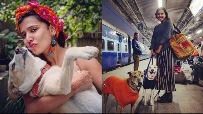 divya-dugar_traveller-with-dogs