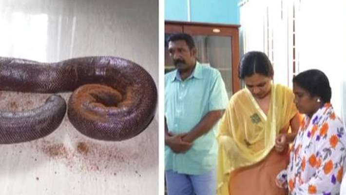 western-blind-snake-smuggling-case-police-arrest-four-including-women